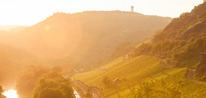 Lassen Sie sich im Weinland Nahe von Land und Leuten verzaubern und entdecken Sie, wie schön Deutschland sein kann.