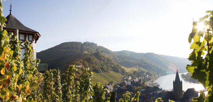 Weinreise an die Mosel: Weisswein auf Platz 1