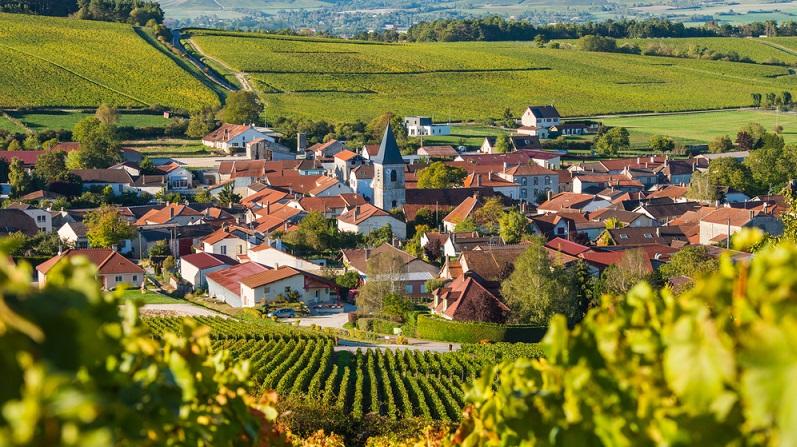 Eines der wesentlichen Kriterien für dieses Getränk ist seine Herkunft. Nur Produkte, die vollständig aus der Champagne in Frankreich stammen, dürfen diesen Namen tragen.