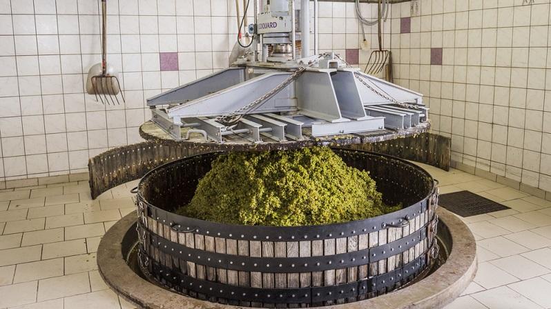 Der nächste Schritt besteht darin, die Weintrauben auszupressen. Eine Besonderheit bei der Champagnerherstellung besteht darin, dass die Sorten Pinot Noir und Pinot Meunier besonders schnell abgepresst werden. (#04)